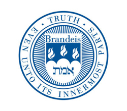 08_cit-logo